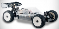 Hobbytech Spirit EP 1/8th brushless buggy